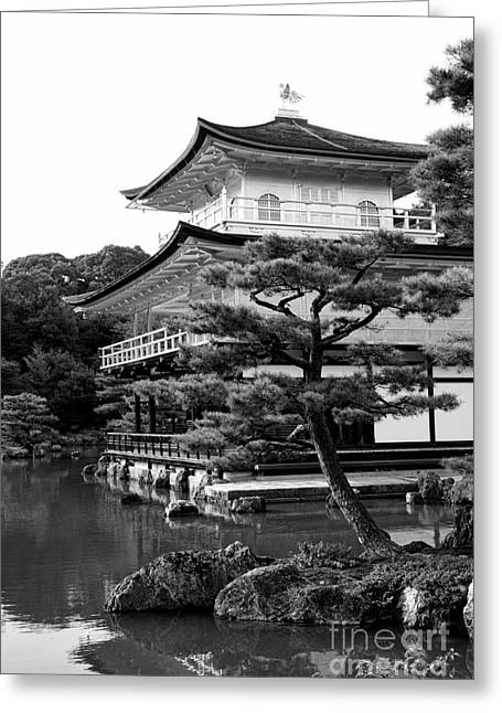 Honshu Greeting Cards - Golden Pagoda in Kyoto Japan Greeting Card by David Smith