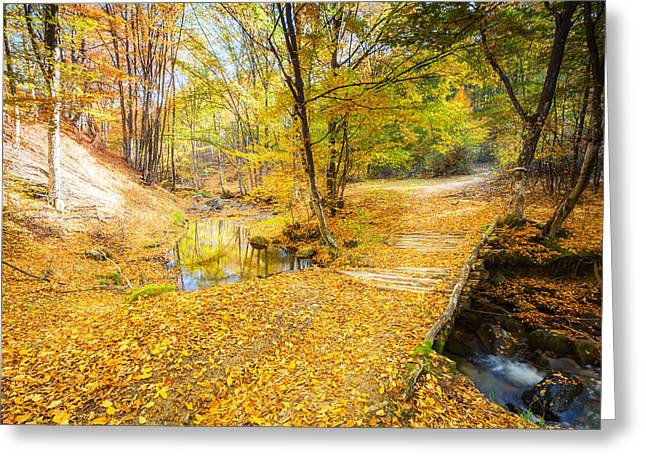 Gora Greeting Cards - Golden River Greeting Card by Evgeni Dinev