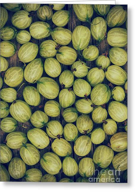 Harvest Art Greeting Cards - Gooseberries Greeting Card by Tim Gainey