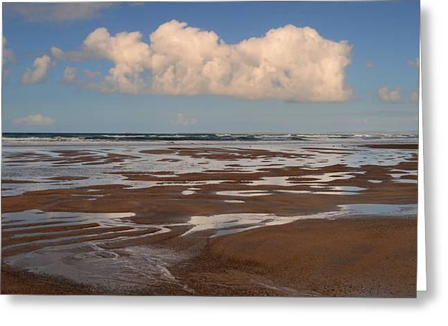 Gowlane Beach Greeting Card by Barbara Walsh