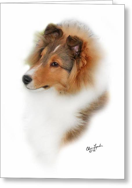Puppies Photographs Greeting Cards - Granite Gables Cruise Control Greeting Card by Chris Lynch