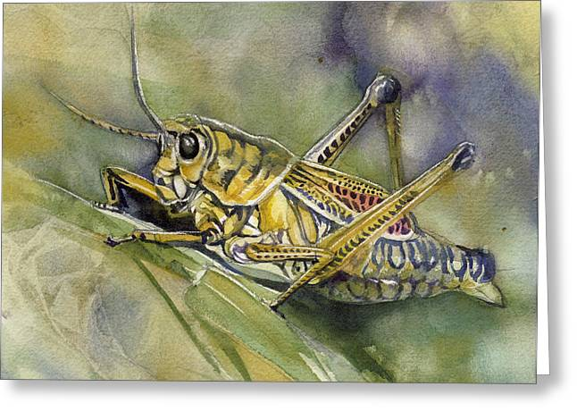 Grasshopper Paintings Greeting Cards - Grasshopper Watercolor Greeting Card by Alfred Ng