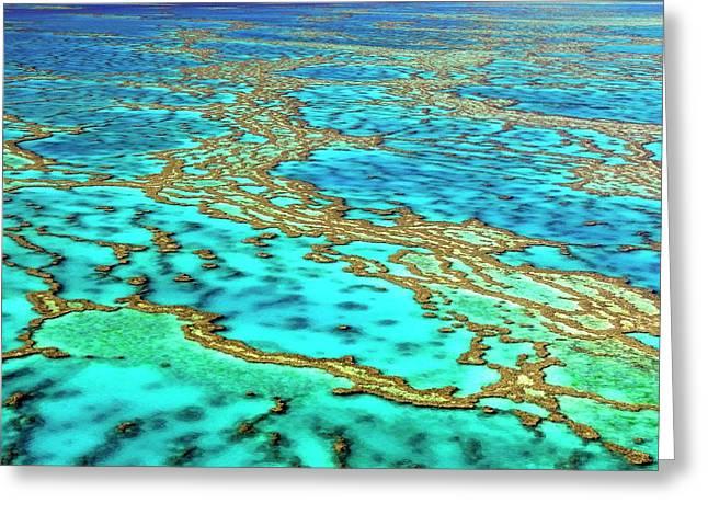 Great Barrier Reef Greeting Card by Bildagentur-online/mcphoto-schulz