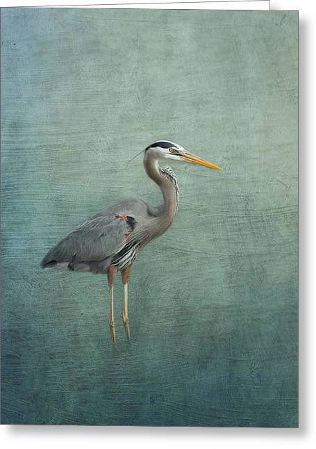 Great Neck Greeting Cards - Great Blue Heron Greeting Card by Kim Hojnacki