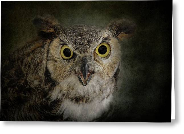 Hiss Greeting Cards - Great Horned Owl Greeting Card by Jai Johnson