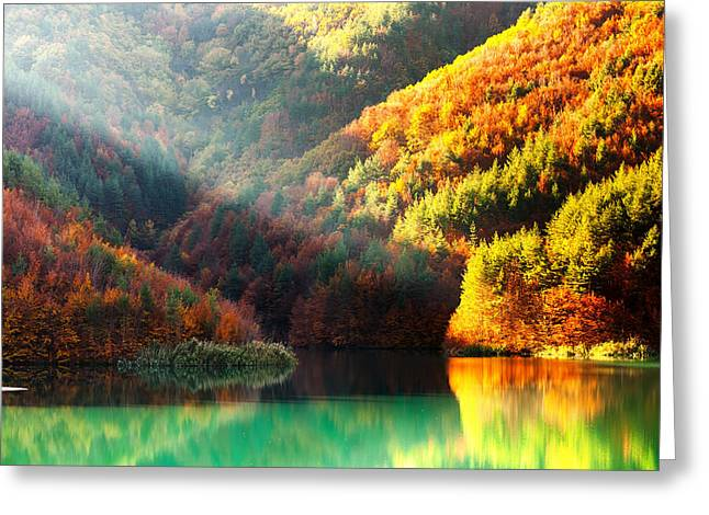 Bulgaria Greeting Cards - Green Lake Greeting Card by Evgeni Dinev