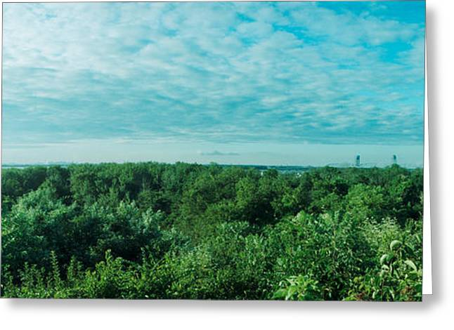 York Beach Greeting Cards - Greenery Along Fort Tilden Beach, Fort Greeting Card by Panoramic Images