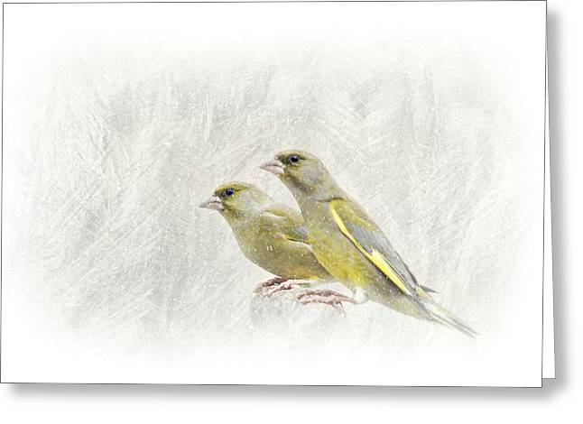 Frosty Mixed Media Greeting Cards - Greenfinch Greeting Card by Heike Hultsch