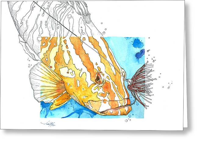 Scuba Diving Mixed Media Greeting Cards - Grouper and Lure Greeting Card by Amber M  Moran