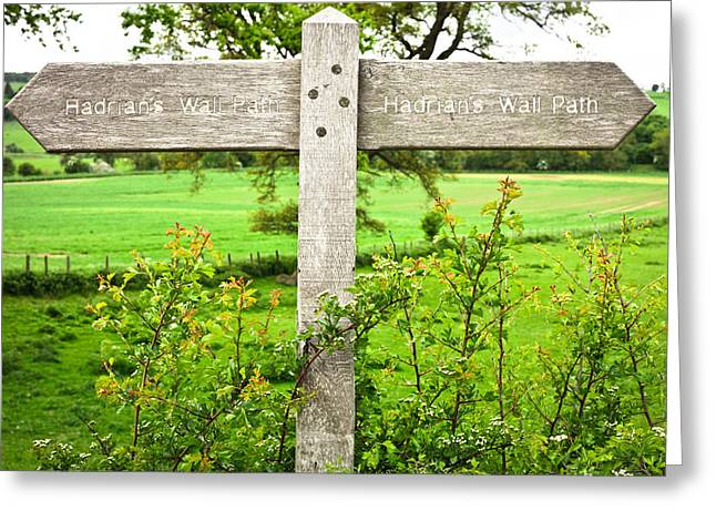 Ancient Ruins Greeting Cards - Hadirans Wall Path Greeting Card by Tom Gowanlock
