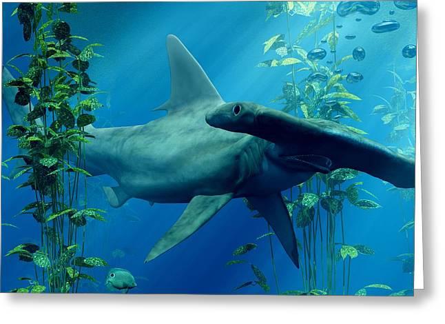 Hammerhead Sharks Greeting Cards - Hammerhead Greeting Card by Daniel Eskridge