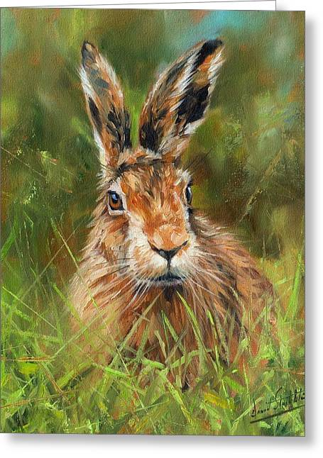 Artist Greeting Cards - hARE Greeting Card by David Stribbling