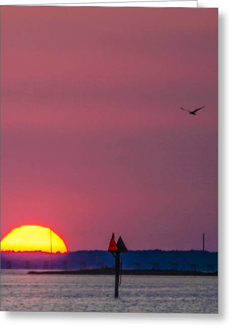 Harkers Greeting Cards - Harkers Island Sunset Greeting Card by Paula OMalley