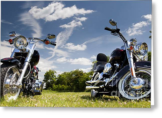 Harley Davidson Motorcycles Greeting Card by Tim Gainey