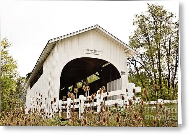 Harris Covered Bridge Greeting Card by Scott Pellegrin