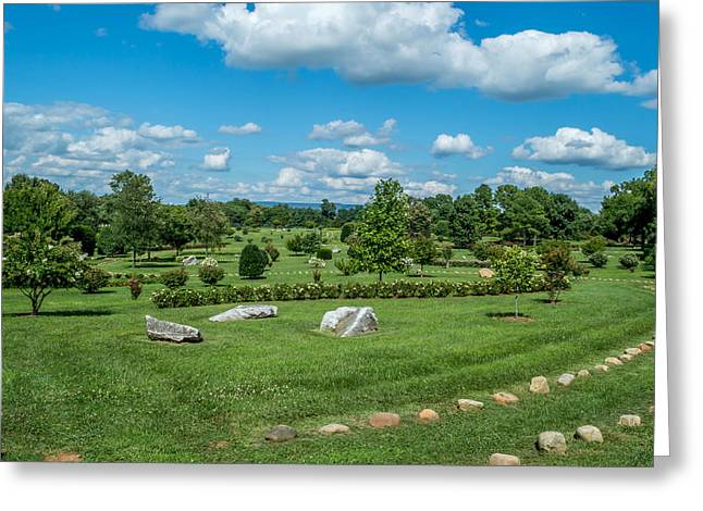 Harvey's Garden Greeting Card by John Ray