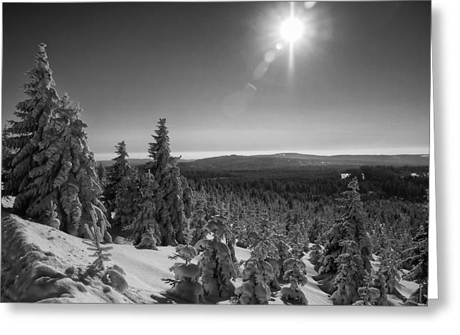 Goetheway In Winter, Harz Greeting Card by Andreas Levi