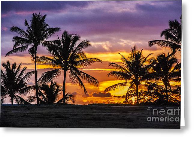 Tropical Beach Greeting Cards - Hawaiian Sunset Greeting Card by Juli Scalzi