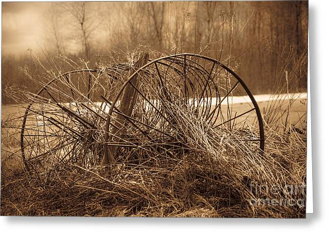 Maine Farms Greeting Cards - Hay Rake Greeting Card by Alana Ranney
