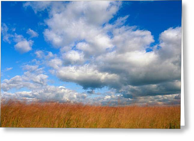 Windy Greeting Cards - Hayden Prairie, Iowa, Usa Greeting Card by Panoramic Images