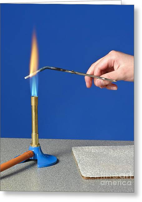 Combusting Greeting Cards - Heating Magnesium In A Flame Greeting Card by Martyn F. Chillmaid