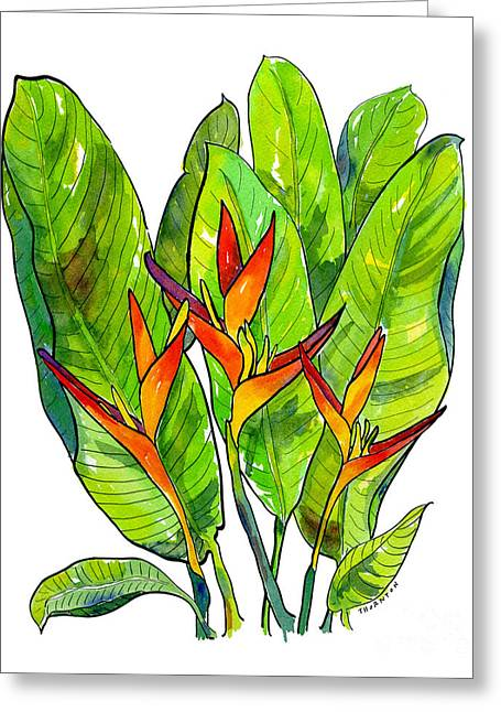 Heleconia Greeting Card by Diane Thornton