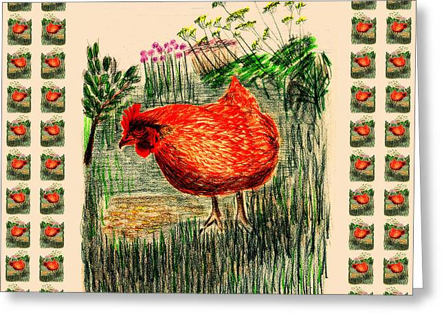 Cook Drawings Drawings Greeting Cards - Hen Greeting Card by Barbara Moignard