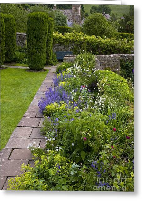 Biology Greeting Cards - Herbaceous Garden Border Greeting Card by Bob Gibbons