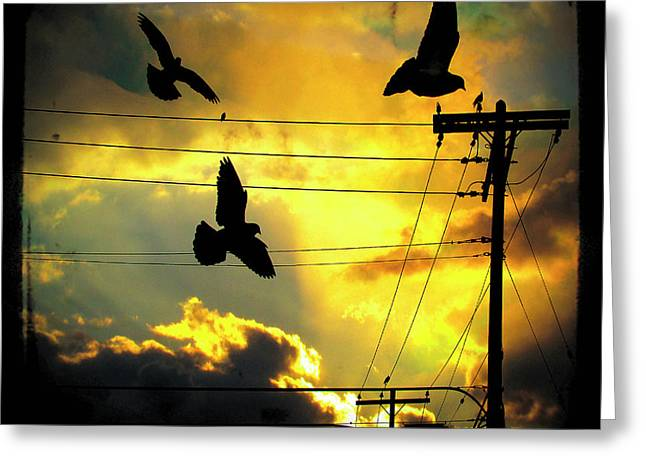 Clouds In Motion Greeting Cards - Here Comes The Sun Greeting Card by Gothicolors Donna Snyder