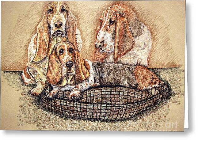 Bred Drawings Greeting Cards - Hesser Puppies Greeting Card by Linda Simon