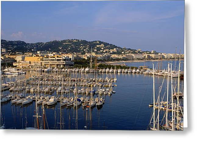 Sailboat Images Greeting Cards - High Angle View Of Boats Docked At Greeting Card by Panoramic Images