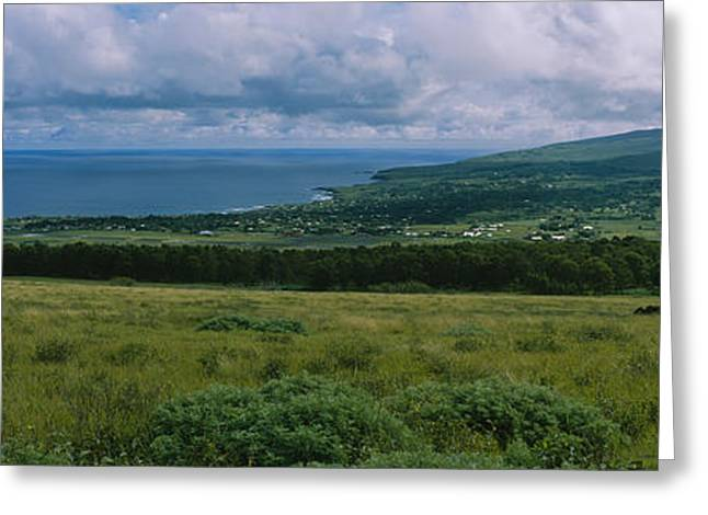 Pasture Scenes Greeting Cards - High Angle View Of Trees Greeting Card by Panoramic Images