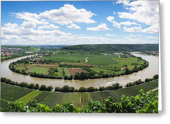 Winemaking Greeting Cards - High Angle View Of Vineyards, Neckar Greeting Card by Panoramic Images