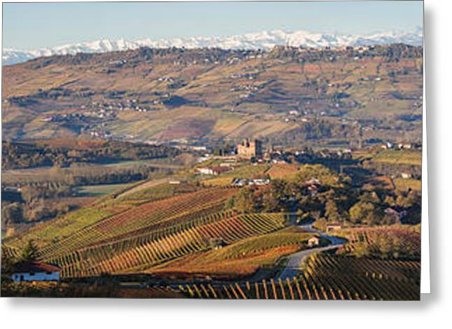 Vineyard Scene Greeting Cards - High Angle View Of Vineyards Greeting Card by Panoramic Images