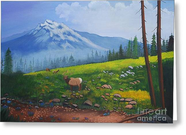Stretched Cotton Canvas Greeting Cards - High Country Elk  Greeting Card by Ruth  Housley
