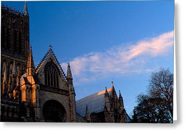Bare Trees Greeting Cards - High Section View Of A Cathedral Greeting Card by Panoramic Images