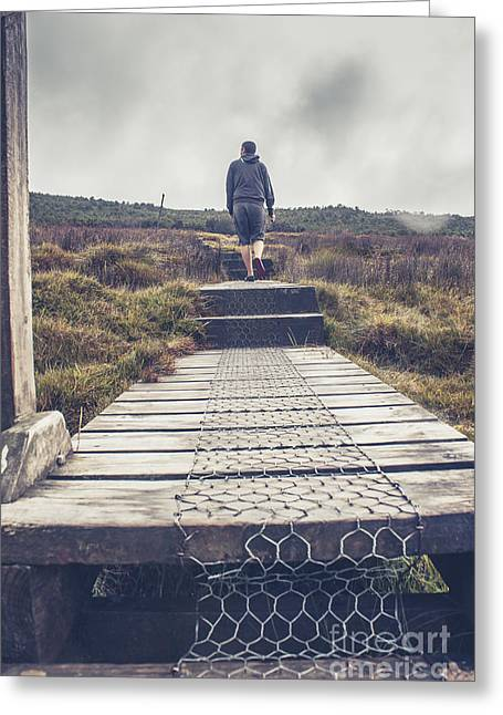 Overland Greeting Cards - Hiker on the Overland Track in Cradle Mountain Greeting Card by Ryan Jorgensen
