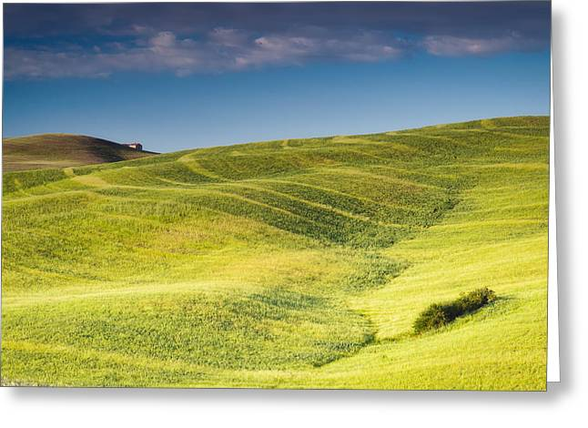 Tuscan Hills Photographs Greeting Cards - Hills of Barley Greeting Card by Michael Blanchette