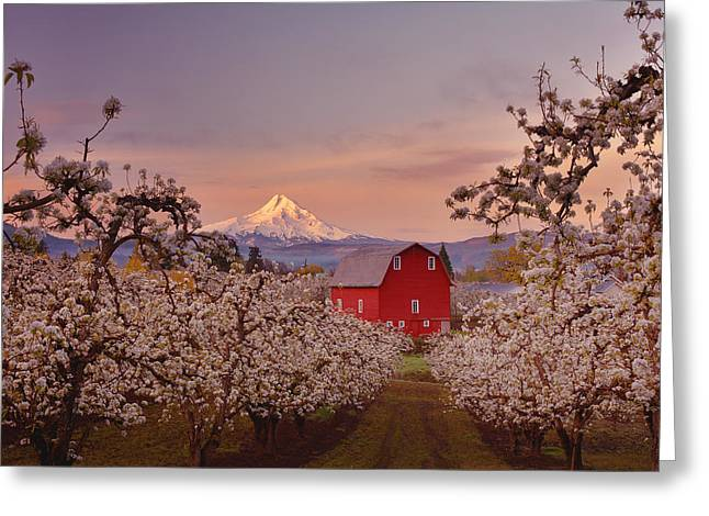 Red Barn Prints Greeting Cards - Hood River Sunrise Greeting Card by Darren  White