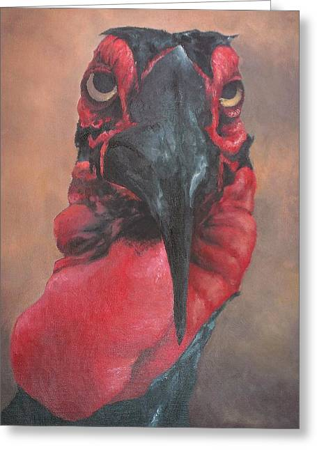 Hornbill Paintings Greeting Cards - Hornbill Greeting Card by Keith Michenzie