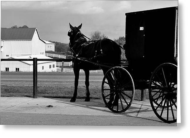 Blinders Greeting Cards - Horse and Buggy and Farm Greeting Card by Frozen in Time Fine Art Photography