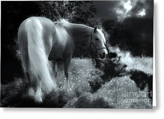 Phantasy Greeting Cards - Horse Greeting Card by Christine Sponchia