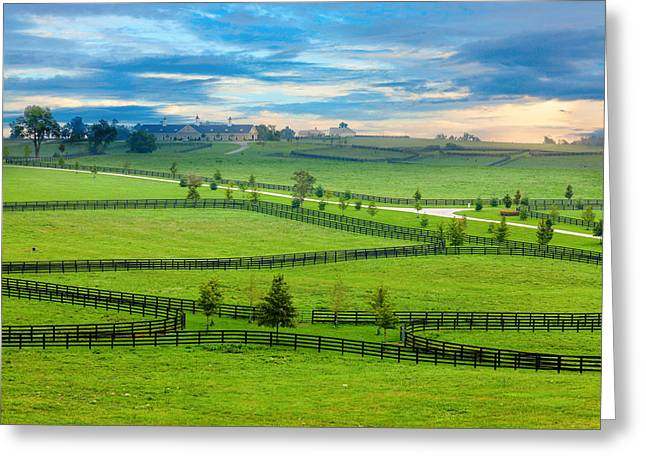 Recently Sold -  - Pen Greeting Cards - Horse country Greeting Card by Alexey Stiop