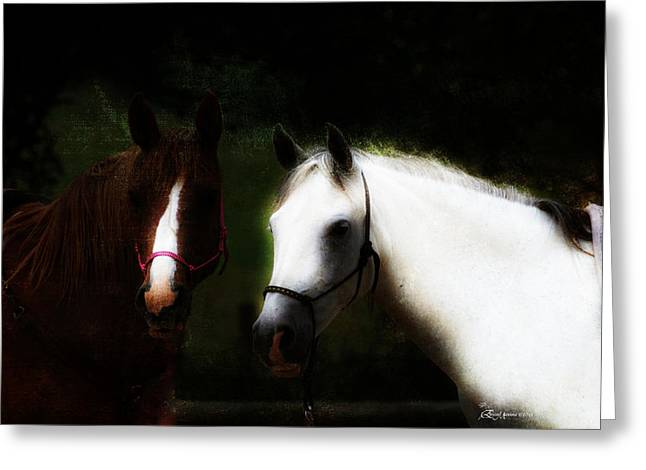 Broncos Mixed Media Greeting Cards - Horses Greeting Card by EricaMaxine  Price