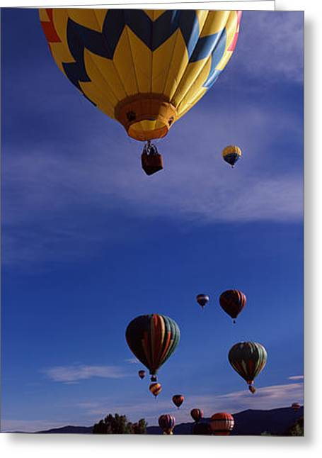 Mid-air Greeting Cards - Hot Air Balloons Rising, Hot Air Greeting Card by Panoramic Images