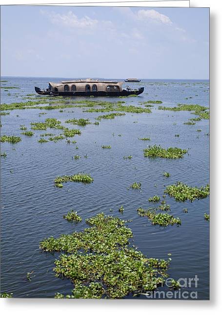 Kerala Greeting Cards - Houseboats on the Kerala Backwaters in India Greeting Card by Robert Preston