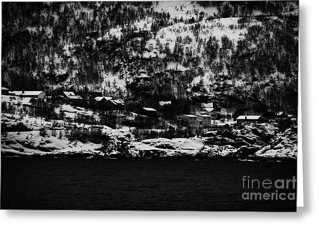 Norwegian Sea Greeting Cards - Houses On The Outskirts Of Oksfjord During Winter Norway Europe Greeting Card by Joe Fox