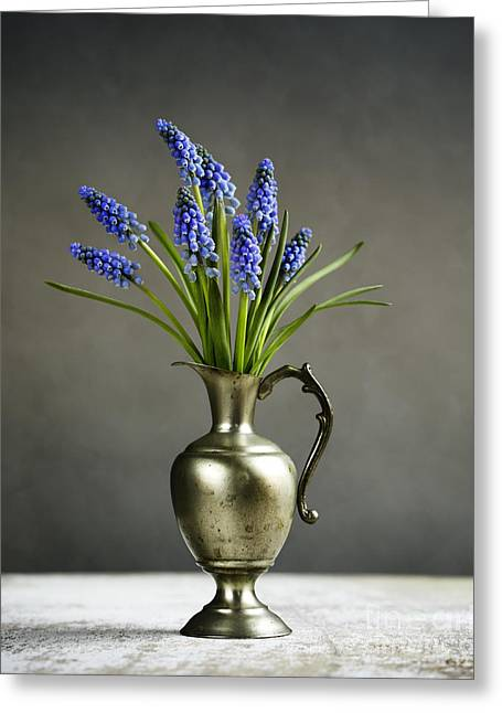 Hyacinth Still Life Greeting Card by Nailia Schwarz