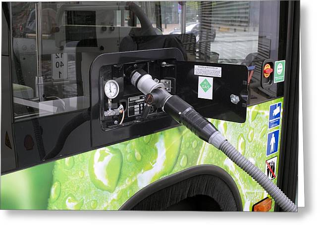 Future Tech Greeting Cards - Hydrogen fuel cell bus Greeting Card by Science Photo Library