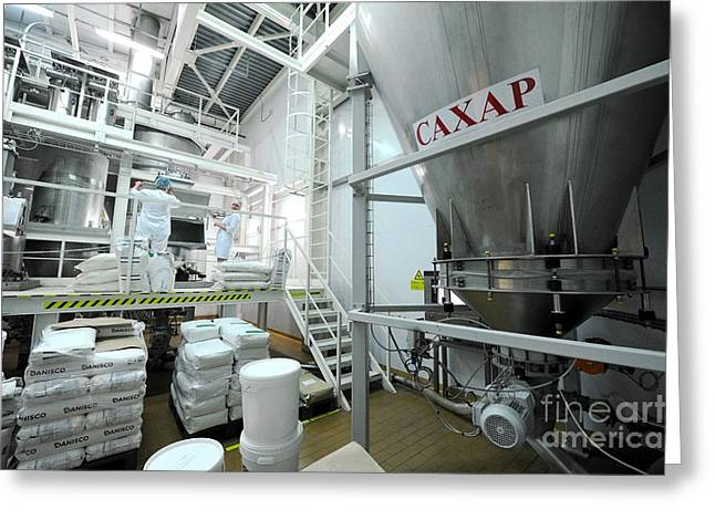 Dairy Factories Greeting Cards - Ice Cream Factory Greeting Card by Ria Novosti